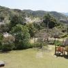 淡路島の桜の観光名所、曲田山公園に登ってきました〜😁