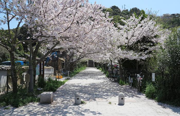 曲田山公園の入り口