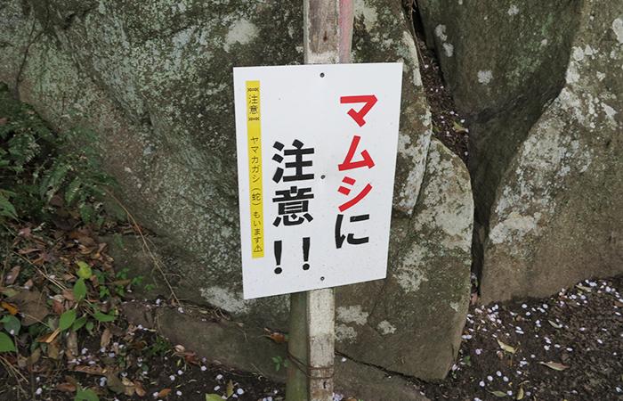 曲田山のマムシに注意の看板
