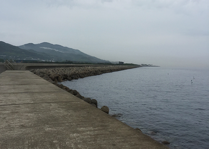 佐野新島(南側)