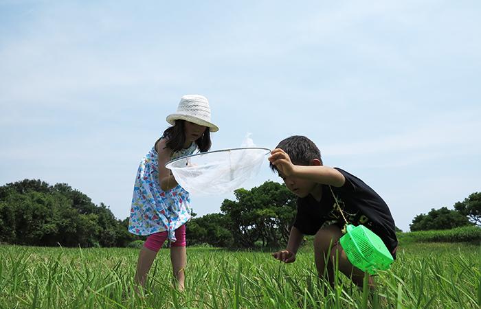 淡路島 成ヶ島 ハマボウ祭り 長男と可愛い女の子