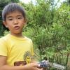 淡路島の無農薬・ブルーベリー摘み取り園に行ってきました。<日帰り観光におすすめ>