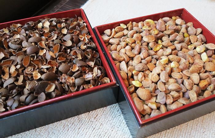 椿の殻と種