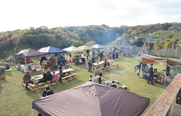 菜音Camp