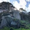 高さ約12m。岩上神社の神籠石(ひもろぎいし)からの眺望がよかったよ😉