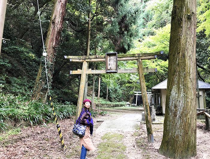 浅野公園 不動の滝