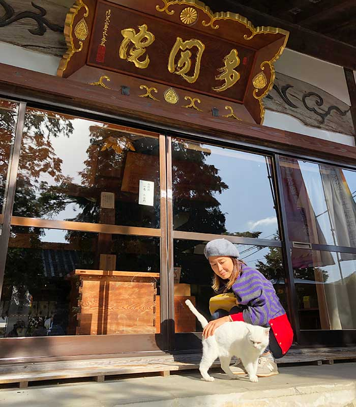 覚住寺の招き猫