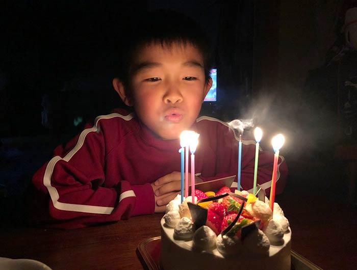 日洋堂のケーキ