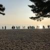 淡路島 大浜海岸 ゴミ掃除