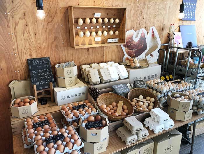 北坂養鶏場の直売所の内観