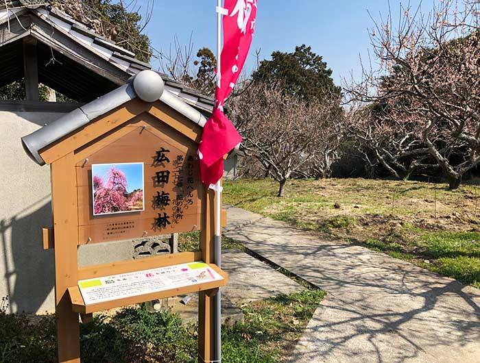 花の札所 第27番 広田梅林