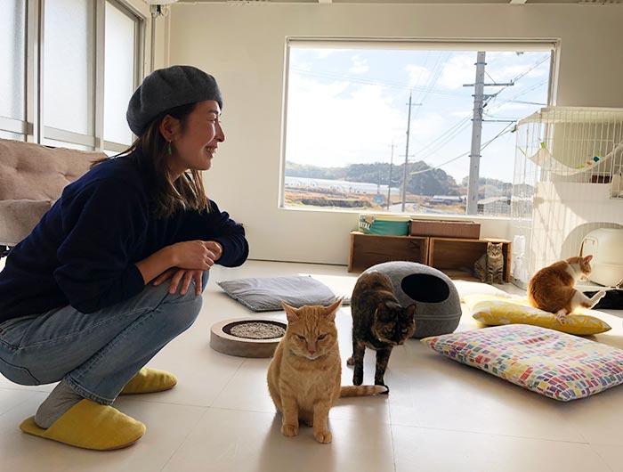 淡路島の猫カフェ toneko