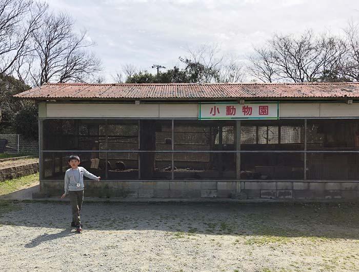 淡路島牧場の小動物園