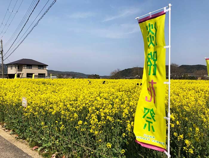 大野菜の花迷路