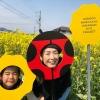 約20万本❗️淡路島「大野菜の花迷路」で、子供と遊んできたよ😁【〜2019.04.07】