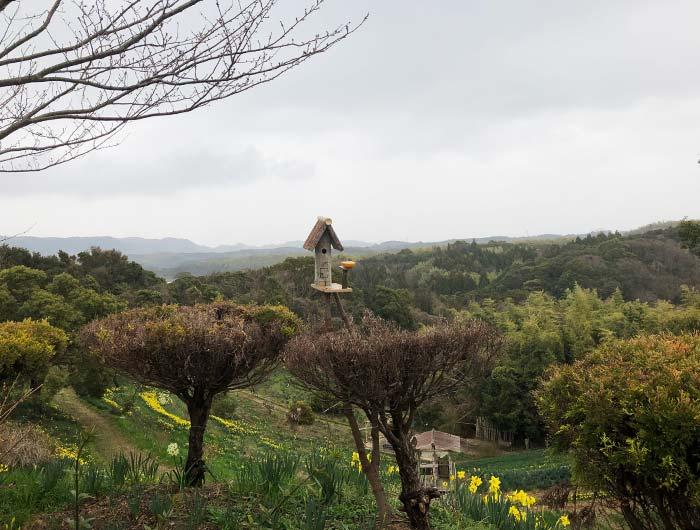 淡路島 水仙の丘 鳥の家