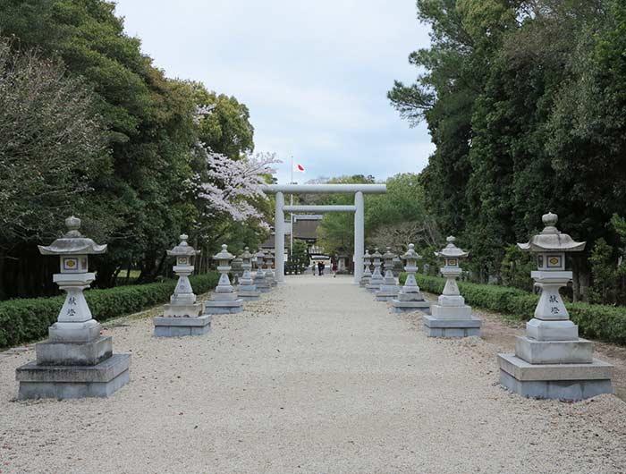 伊奘諾神宮の桜
