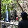 淡路島・鮎屋の滝は蛍だけじゃない。桜も渓谷もいい感じだよ〜🌸