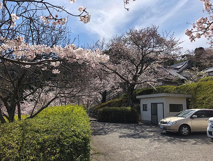 圓城寺の駐車場