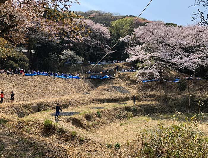 伊勢の森神社のお祭り