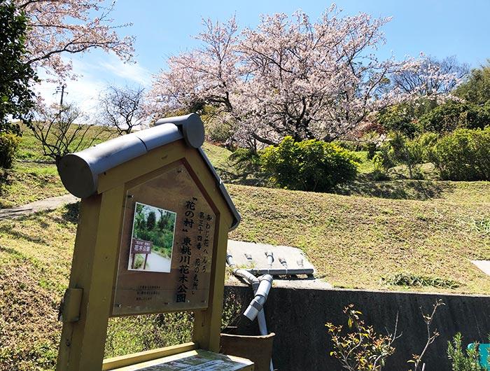 """花の札所 第34番 """"花の村""""東桃川花木公園"""