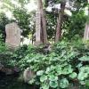 遂に見つけた!淡路島の名水「広田の寒泉」はパワースポットのようでした