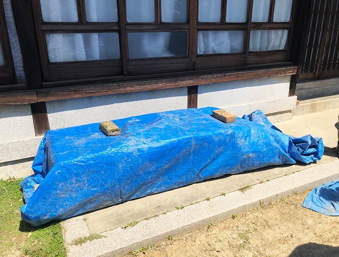 淡路島・鮎原米づくり2019