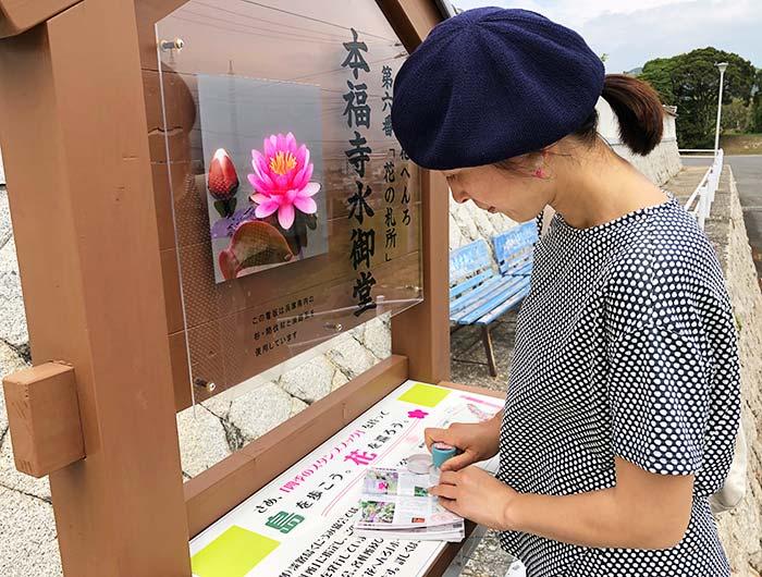 本福寺水御堂 花の札所