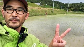 淡路島で鮎原米づくり