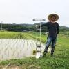 淡路島・鮎原米づくり2019 #06-07|田車で、草引き三昧😂農具は高いぞ❗️