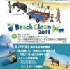 淡路島「楽しく溶け合うビーチクリーン2019」