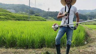 淡路島でお米づくり