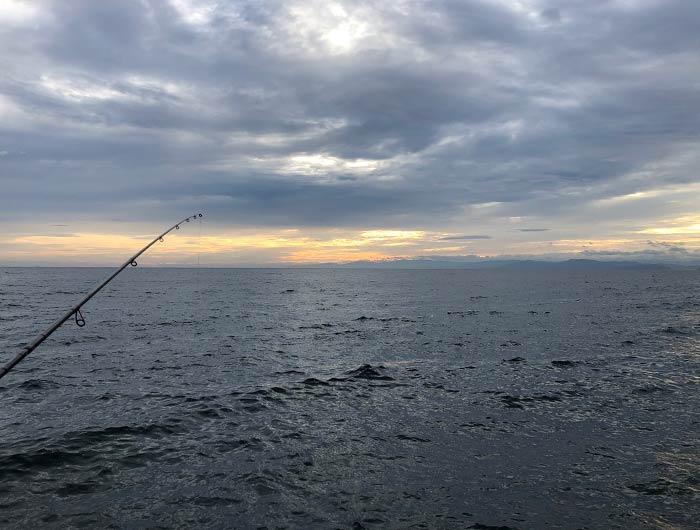 淡路島の海で釣り