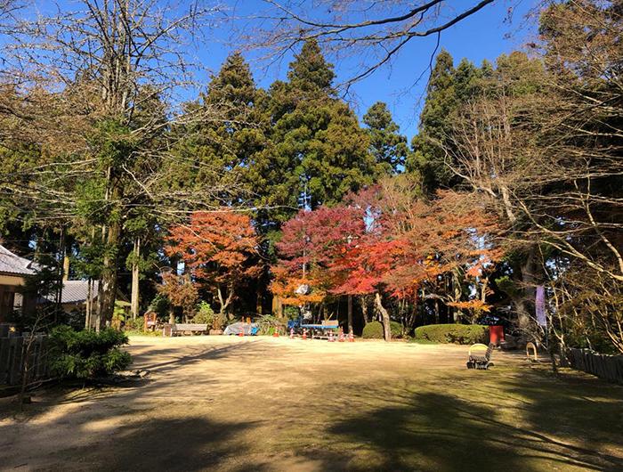 常隆寺の境内の様子