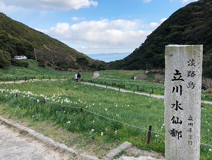立川水仙郷