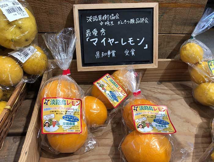 淡路島レモン(マイヤーレモン)