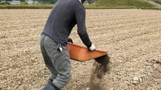 田んぼに堆肥をまく