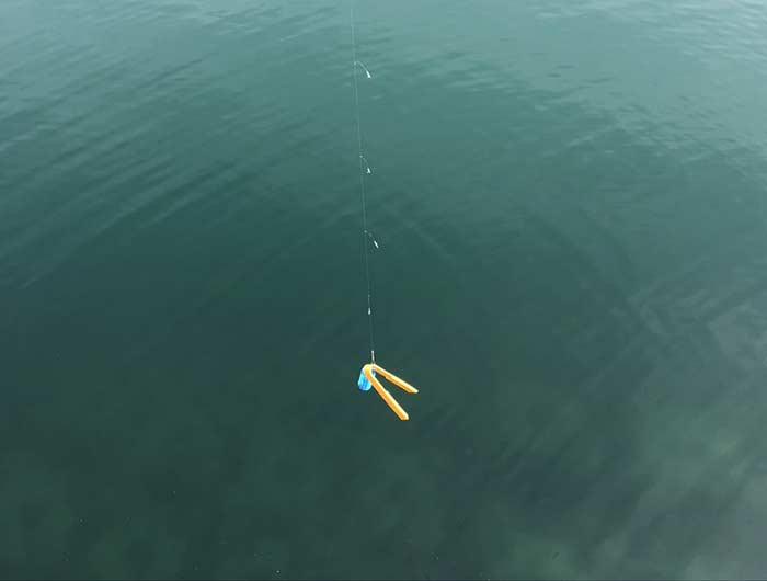 魚バサミを釣り上げる