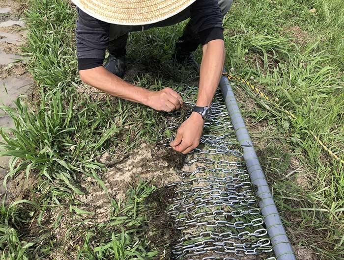 雑草を取り除く作業