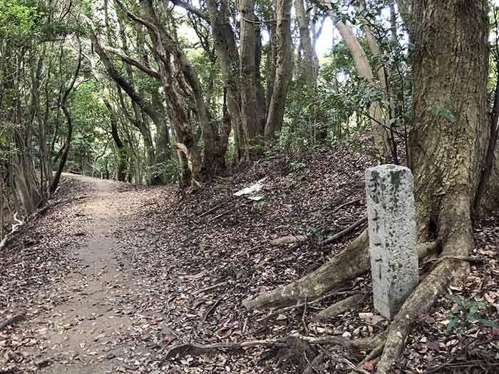 先山の登山道 11丁石
