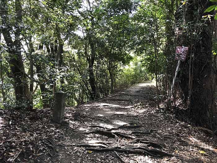 先山の登山道 12丁石