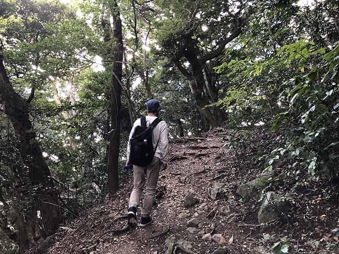 山登りをする太