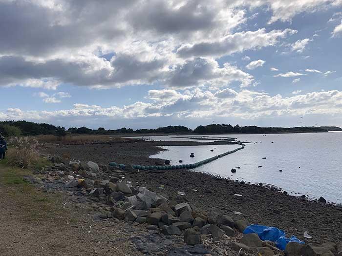 成ヶ島の干潟