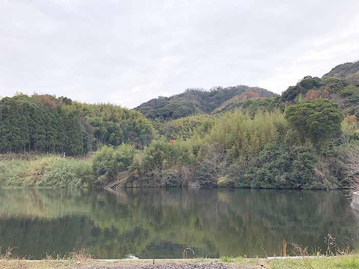 縁たこの裏にある池