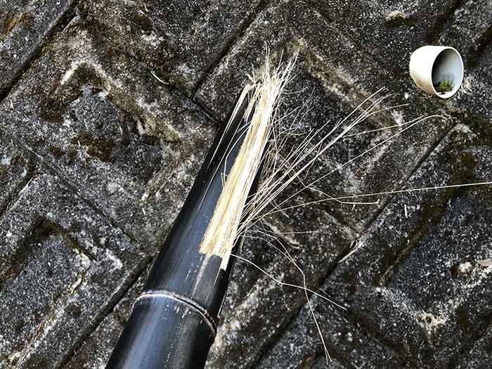 黒竹の繊維が細い