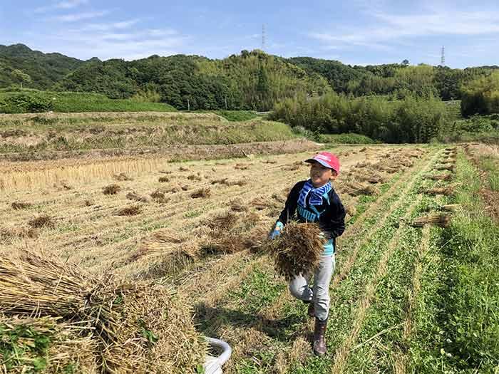 息子が農作業