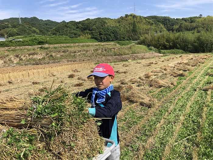 息子が農作業お手伝い
