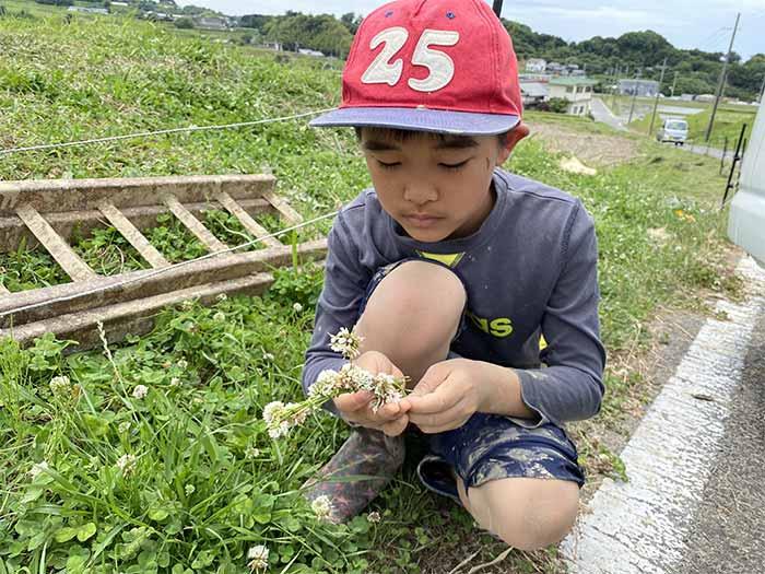 花飾りを作る息子
