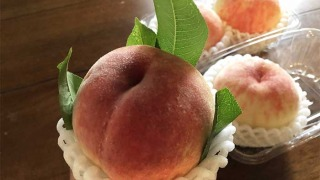 森果樹園の桃