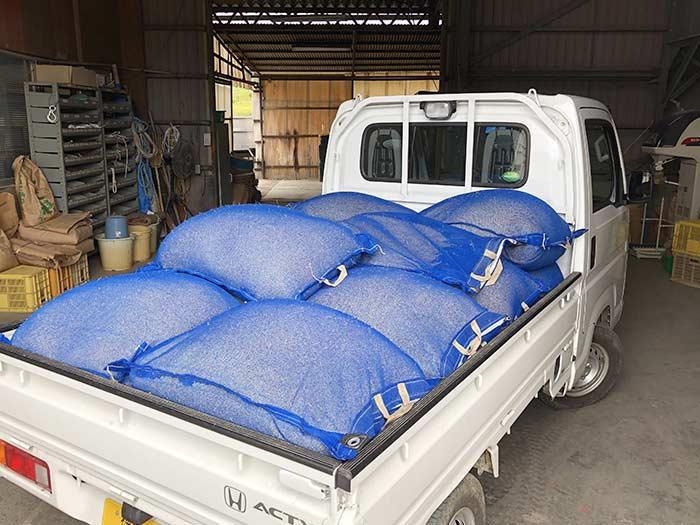 収穫できた籾は20袋弱